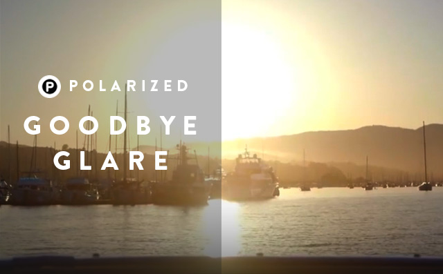 Goodbye Glare - Polarized - Sunglass Hut Hong Kong
